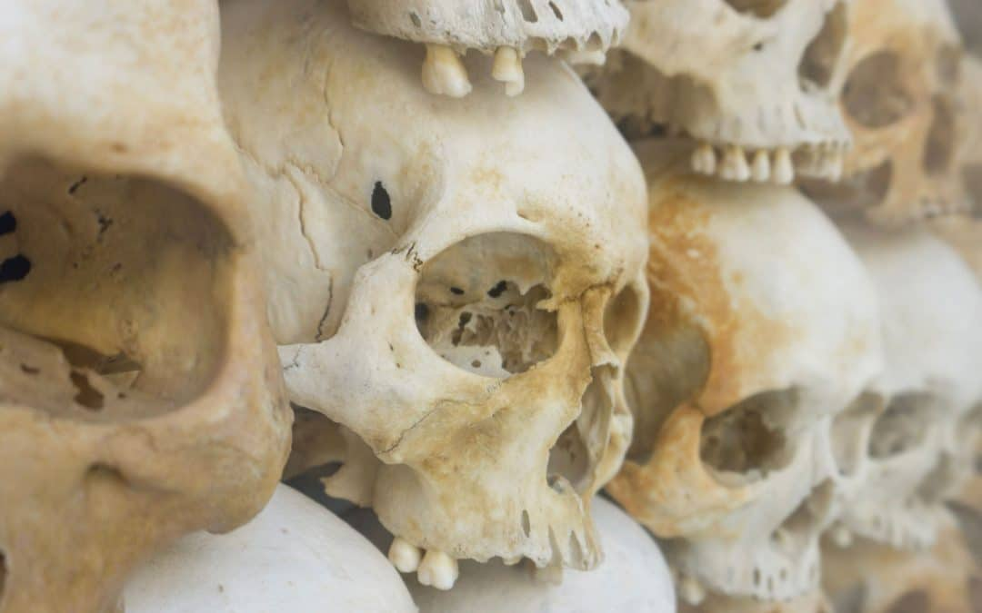 A Heap of Skulls - 30 Tales from Muslim Sources | Folk Tales | Traditional Tales | Storyteller | Ziyadliwa
